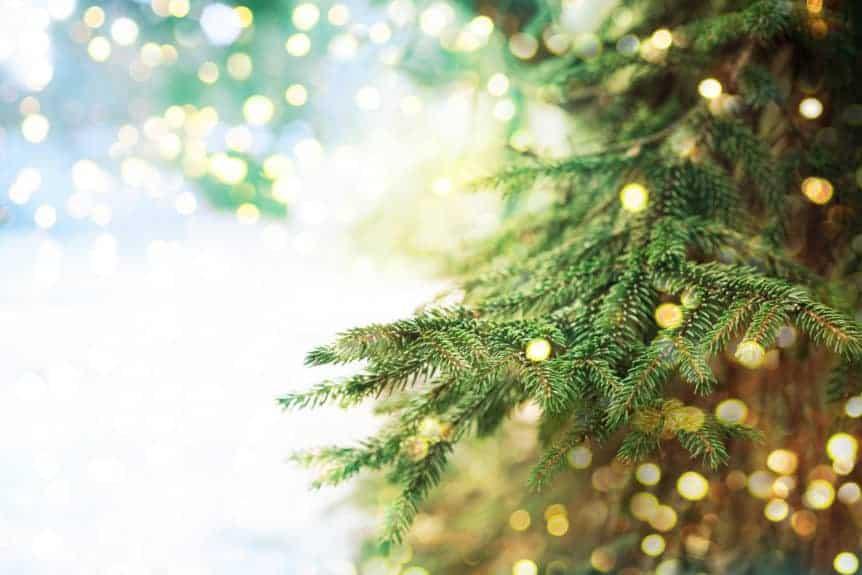 why i buy an organic christmas tree and lead free christmas lights natural baby mama - Lead Free Christmas Lights