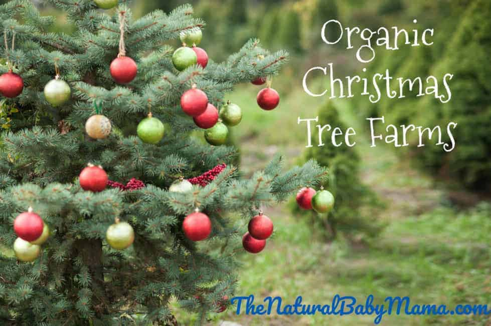 b4ece703c23 Organic Christmas Tree Farms by state. Natural Baby Mama ...
