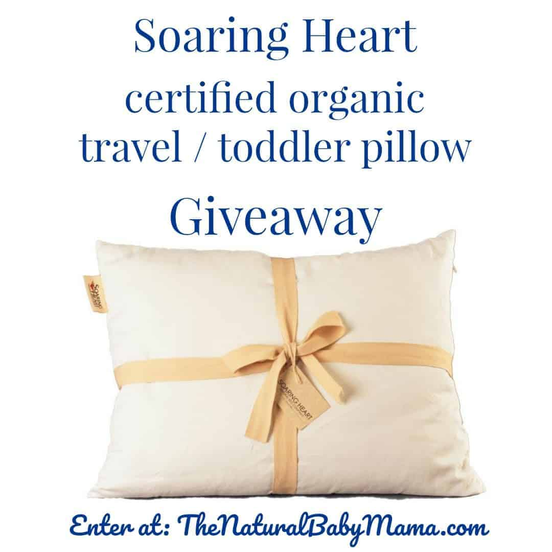 Soaring Heart Certified Organic Toddler Travel Size Pillow Cotton Cover With Washable Wool Bolus Fill